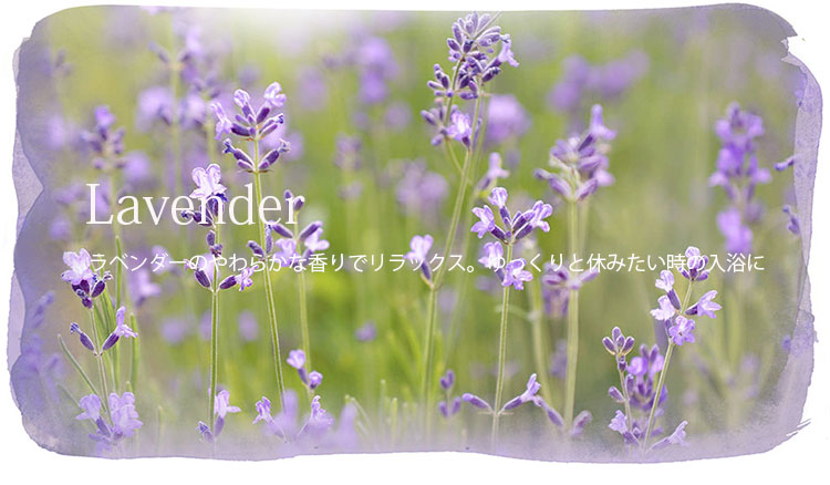 WELEDA(ヴェレダ)バスミルク セット・ラベンダーの画像